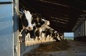 UK wide consultation into dairy sector to tackle supply chain issues launched