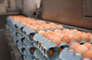 London egg packer and wholesaler found guilty of egg marketing fraud