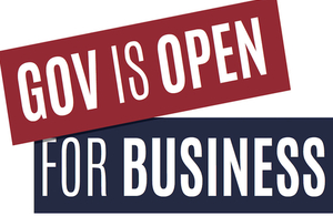 Government is open for business: new advisory panel