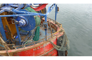 Sea Harvester report and flyer published