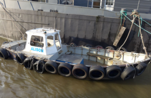 Collision between a passenger vessel and a workboat