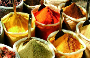 Protecting the consumer: real time DNA detection in spices