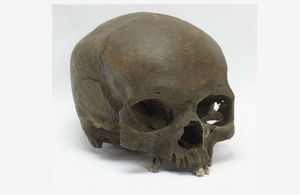 Human skull found by dog walker sheds light on Somerset's history