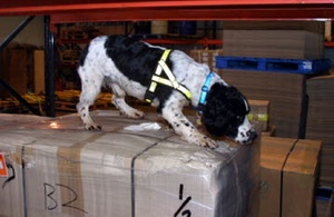 Animal medicine seizure notice: Parcel addressed to Stoke on Trent, Staffordshire